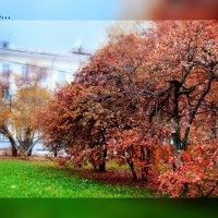Осень.. :: Катрин Моргачева