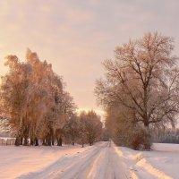 ...розовый закат... :: Александр Садовский