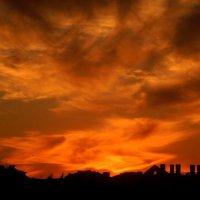 Закат в Олимппарке :: Максим Битюцкий