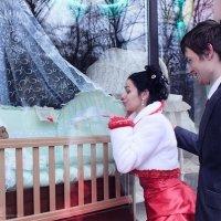 Свадбьба :: Надежда Василисина
