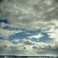 облака весны :: Михаил Фенелонов
