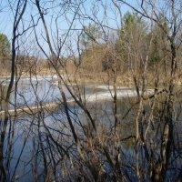 Весна на реке :: Сергей Комков