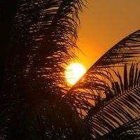 Восход в Канчанабури :: Oleg Gendelman