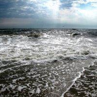 море вздуется бурливо... :: Виктория Колпакова