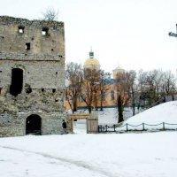 Скала-Подольская крепость. :: Николай Сидаш
