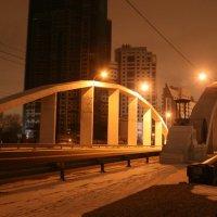 Хорошёвский мост :: Александра Крестьянова