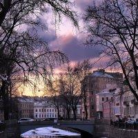 В ожидании весны :: Ольга Тихомирова