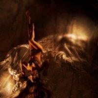 light :: darina sakalosh