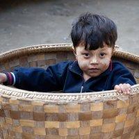 Ребёнок в корзине. :: Олег Грачёв