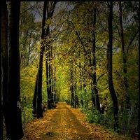 Осень на кладбище :: Leonid Smirnov