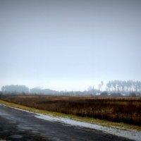 По дороге домой :: Артем Анохин