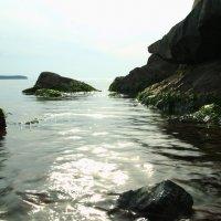 Каменный остров :: Алексей Смирнов