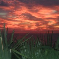 В сто сорок солнц закат пылал :: Анастасия Ануфриева