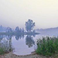 Утро...Туман... :: Игорь Суханов