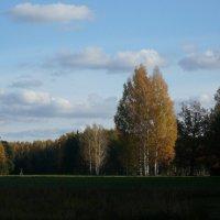 Павловск :: Игорь Маяковский