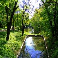 парковый пруд :: наташа