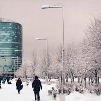 снежная зима :: Ольга Чубан
