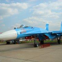 Dsc00493 - МАКС-2007 - С Праздником, друзья! :: Андрей Лукьянов