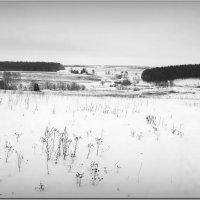 Вид с Немцовской горы! :: Владимир Шошин