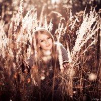 Портрет девушки в закатных лучах уходящего солнца :: Olga Zemlyakova
