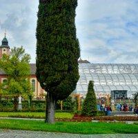 вид на оранжерею и дворец графа Бернадотта :: Александр Корчемный