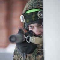 In the ambush :: Сергей Nikon