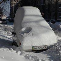 Снег. :: Владимир