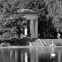 Лето. :: сергей лебедев