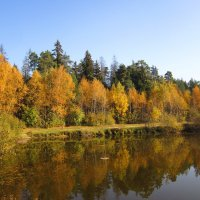 Осень на пруду :: Андрей Снегерёв
