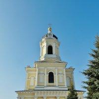 Часы на башне :: Светлана Лысенко