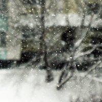 снег / jupiter-9 f2/85 :: Pasha Zhidkov