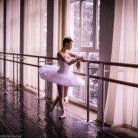 Балерина :: Olga Zemlyakova
