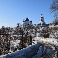 Боголюбский женский монастырь. :: vkosin2012 Косинова Валентина