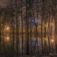 Туманный вечер :: Valeriy Piterskiy