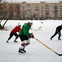 Хоккей у дома :: Валентина Данилова