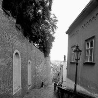 улочки Праги :: Любовь Вящикова