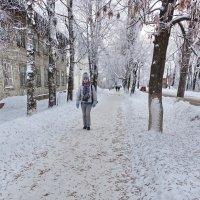 Молочное.Улица проф.Шмидта :: Валерий Талашов
