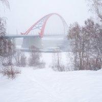 Мост над Обью в снегопад :: Владимир Бондарев