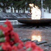 вечная память :: Ирина Корнеева