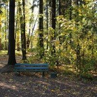 Синяя скамейка :: Aggel