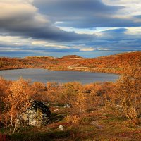 Золотая осень :: Oleg Akulinushkin