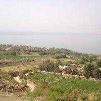 Утро в окрестностях Мертвого моря. :: Жанна Викторовна