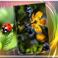 С весной вас Друзья !!! :: СветЛана D