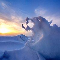 химера последнего дня зимы :: Ingwar