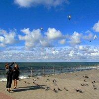 Беседа с чайками :: Сергей Карачин