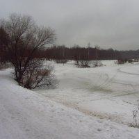 Img_2734 - Первый день Весны-2015 был серый :: Андрей Лукьянов