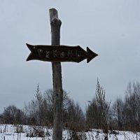 По дороге к обители (от деревни Верхнее Заозерье 7 км по бездорожью) :: Елена Павлова (Смолова)