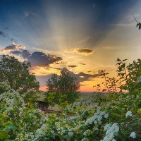 весенний закат :: Виктор Масальский