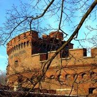 Башня Врангель :: Сергей Карачин