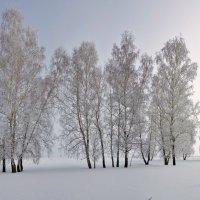 Второй день весны :: Николай Мальцев